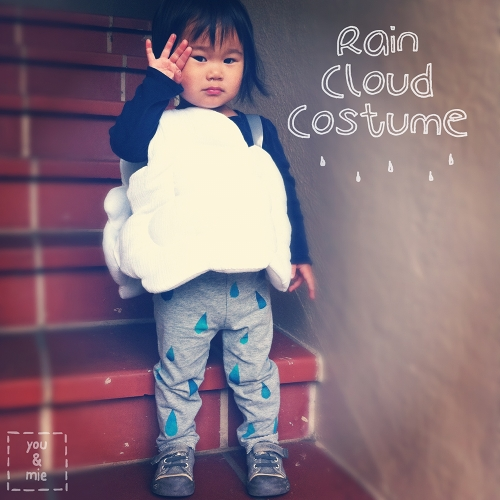 14 Rainy Day Inspired Projects to Make Rain Cloud Costume