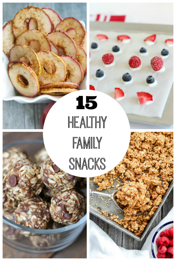 15 healthy snacks for the whole family make and takes