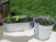 long-planter.jpg