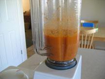 apricots-blender.jpg