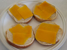 fish-sandwish-cheese.jpg