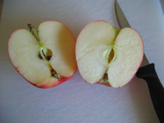 apples-science-cut.jpg