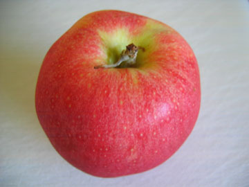 apples-science-whole.jpg