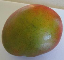 mango-jango-mango-038.jpg