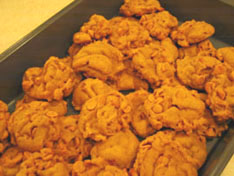martha-food-cookies-pumpkin.jpg