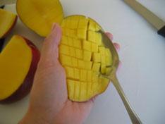 scoop-jango-mango-046.jpg