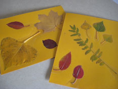 leaves-leaf-rubbings-086.jpg