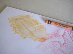 orange-crayon-leaf-rubbings-074.jpg