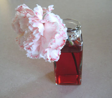 Food coloring flowers make and takes for How to dye flowers using food coloring