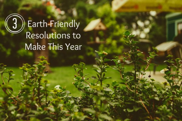 3 Earth-Friendly Resolutions to Make This Year