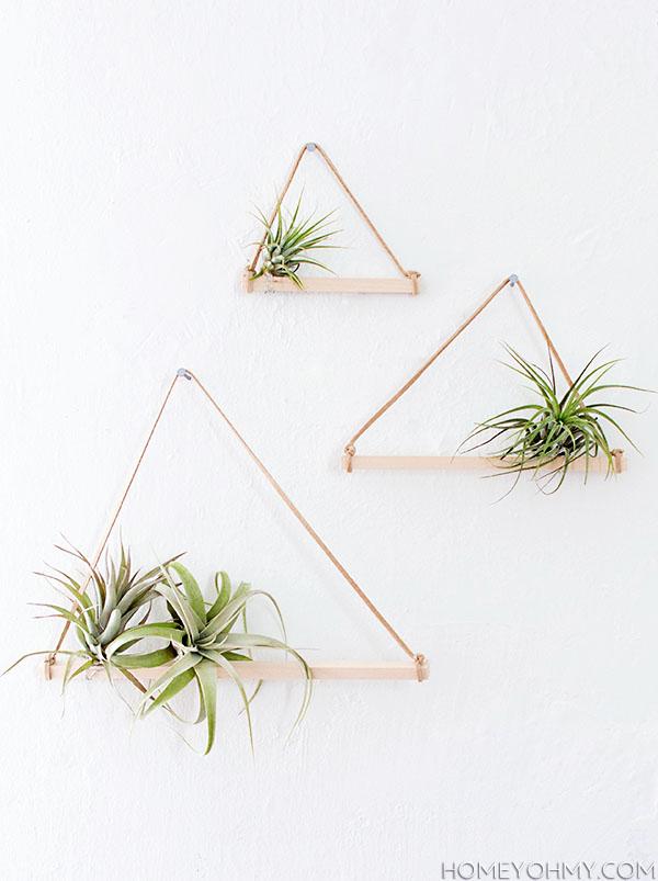 DIY Air Plant Hangers