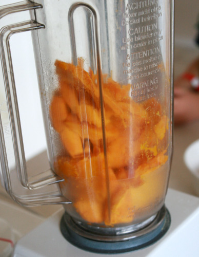 Blending Pumpkin for Puree