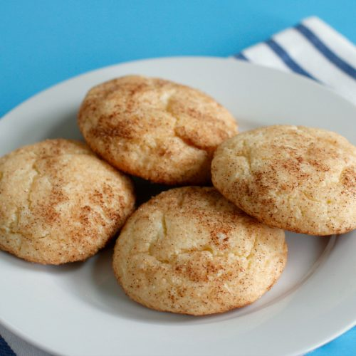 Quick and Easy Cake Mix Snickerdoodles Make and Takes