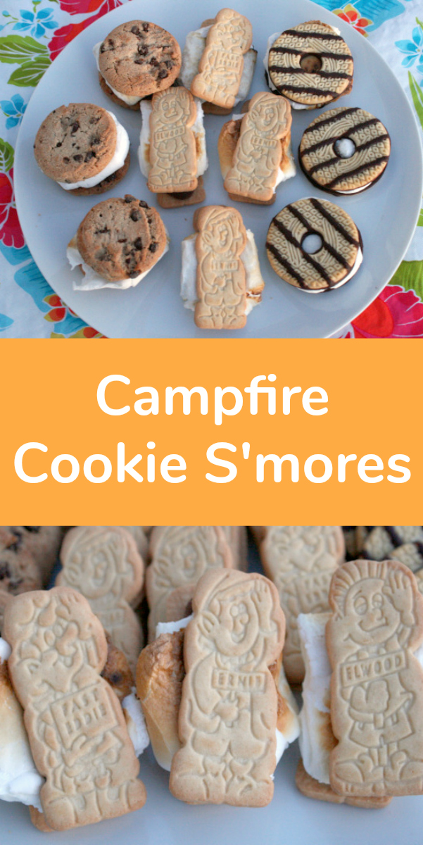 Campfire Cookie S'mores