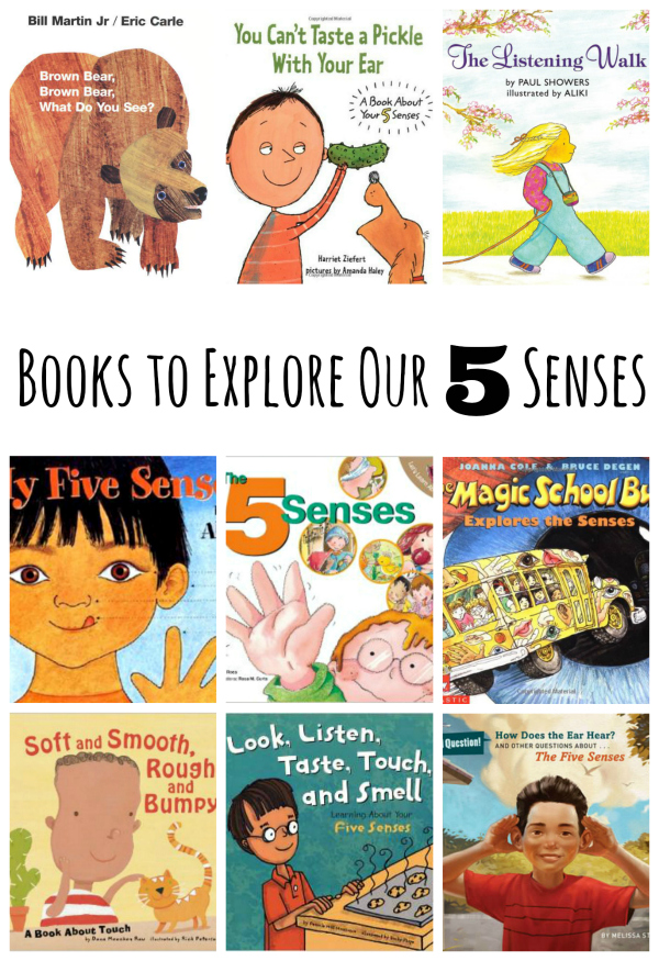 Book Picks for Exploring Our 5 Senses