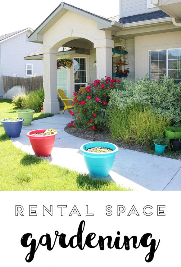 Container Gardening in a Rental Home