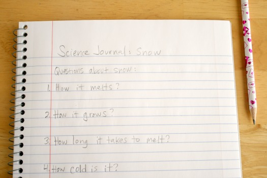 Creating a Science Journal about Snow