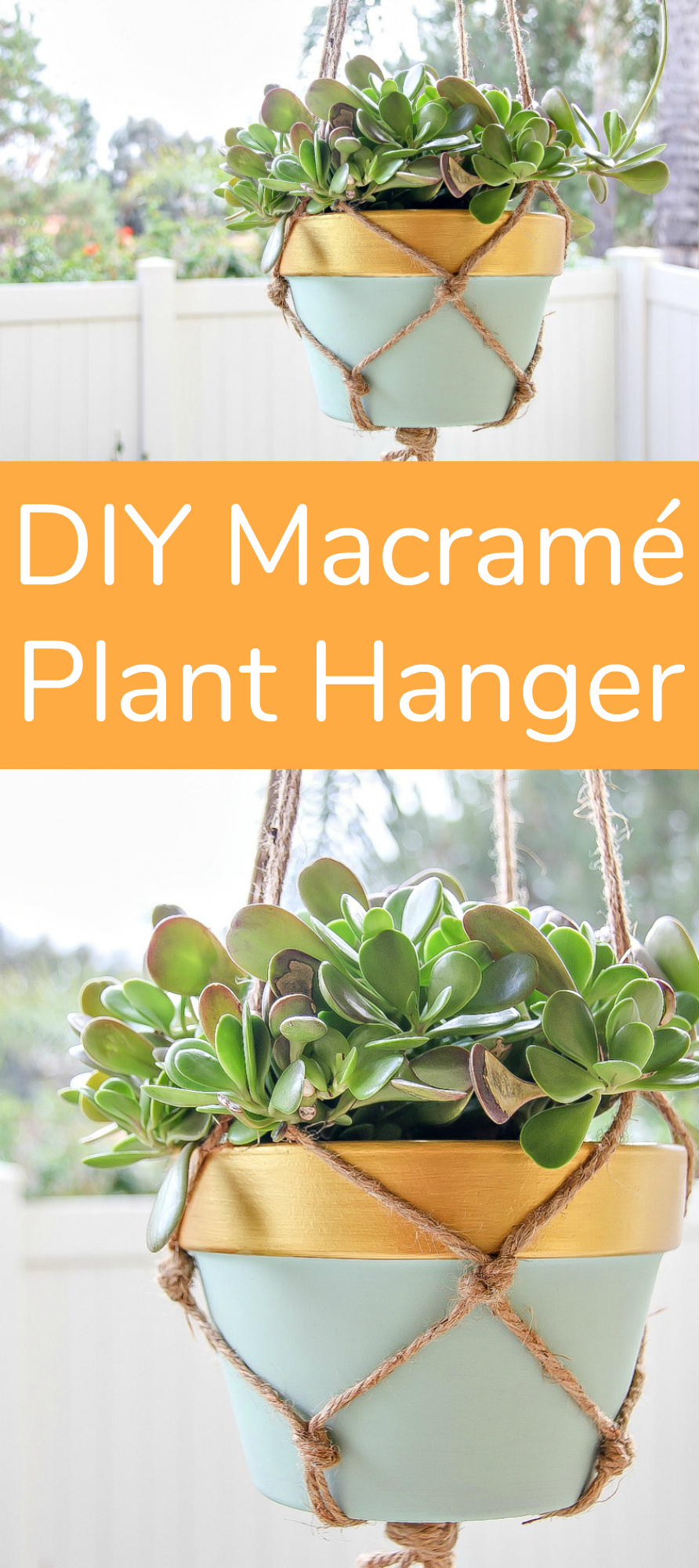 Diy Macrame Plant Hanger For First Timers Make And Takes