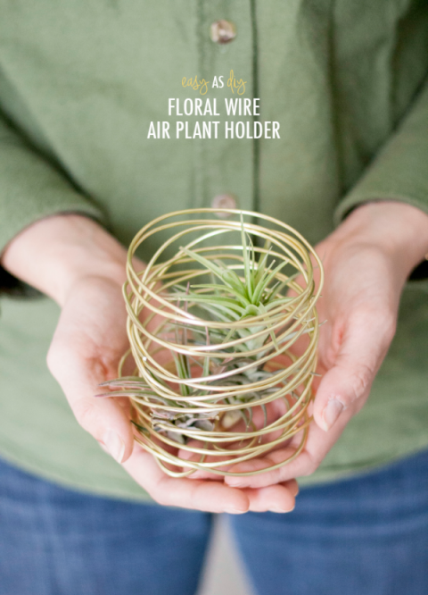 Floral Wire Air Plant Holder: