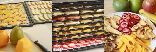 Drying Raw Fruit