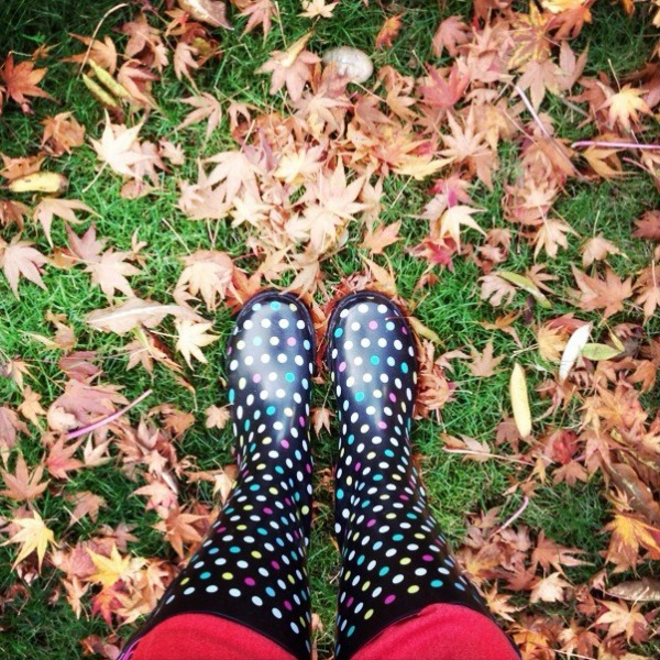 Fall Leaves with rainboots