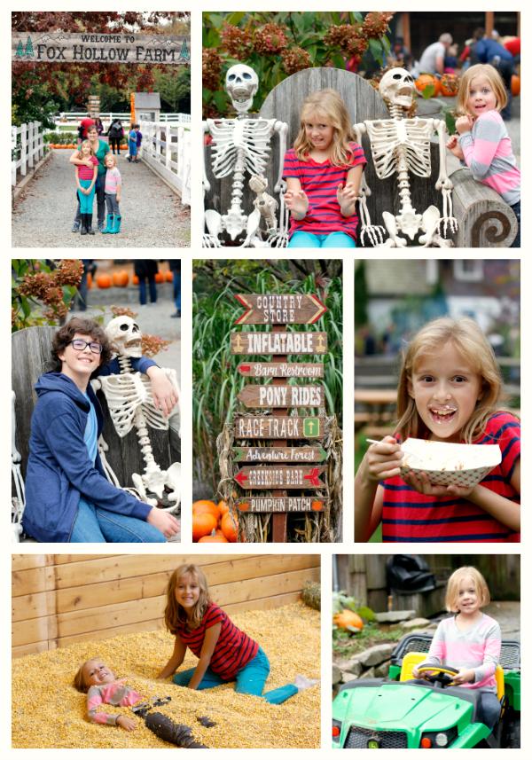 Family Pumpkin Patch Adventure
