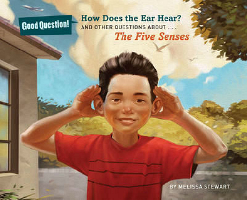 How Does the Ear Hear by Melissa Stewart