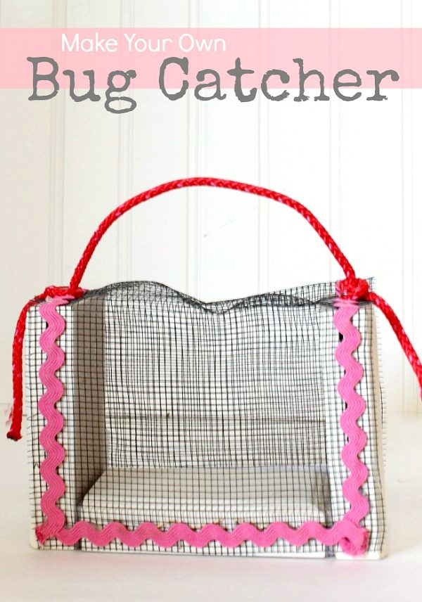 How to Make Your Own Bug Catcher with kids