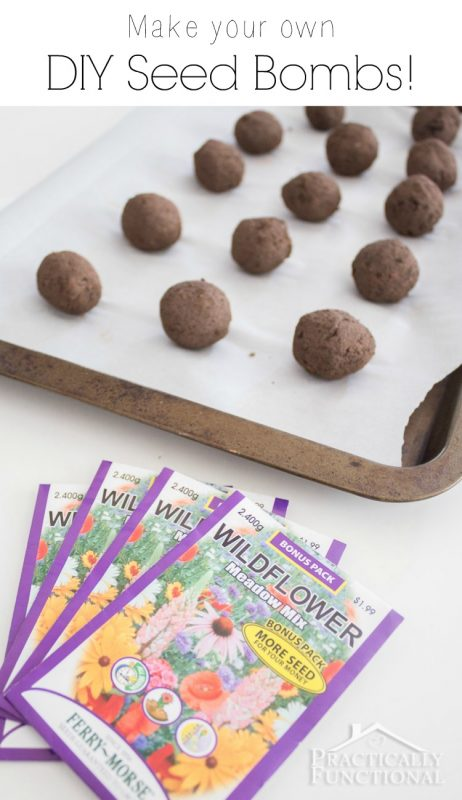 How To Make Seed Bombs