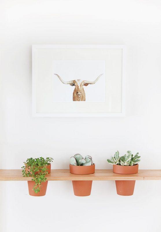 Hanging Planter Shelf