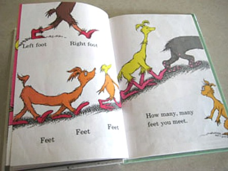 Inside The Foot Book