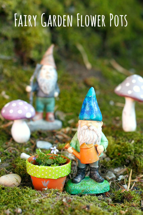 Make Gnome and Mini Fairy Garden Flower Pots
