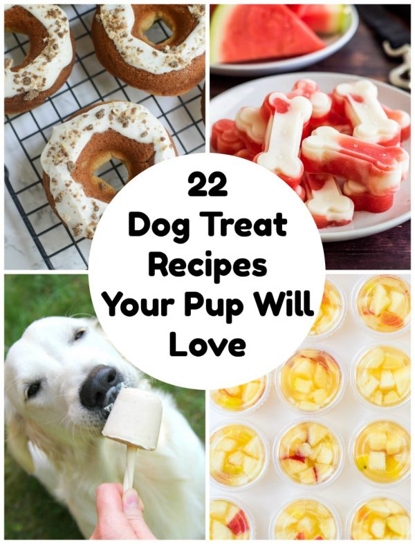 22 Diy Dog Treats Your Pup Will Love Make And Takes