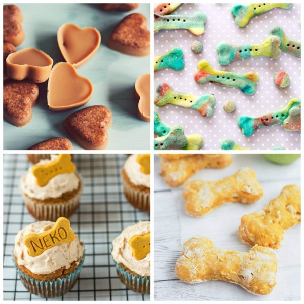 22 Dog Treat Recipes Your Pup Will Love