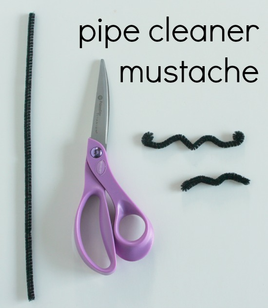 Pipe Cleaner Mustache