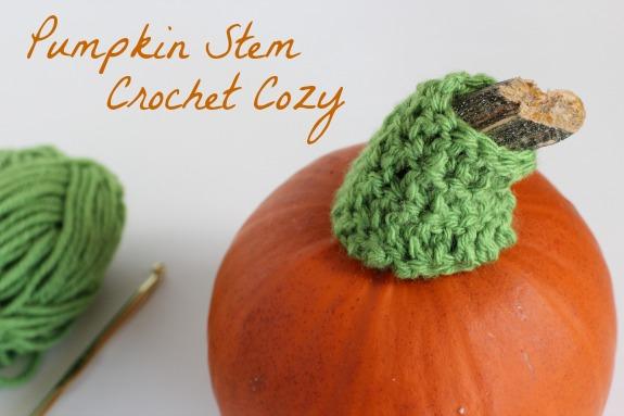 Pumpkin Stem Crochet Cozy