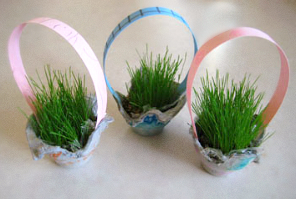 Recycled Egg Carton Baskets for Growing Grass