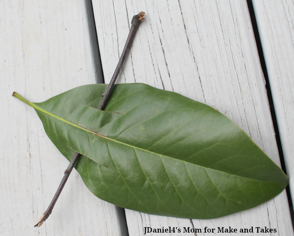 SCIENCE EXPERIMENTS FOR KIDS – EXPLORING RAMPS - Leaf Section