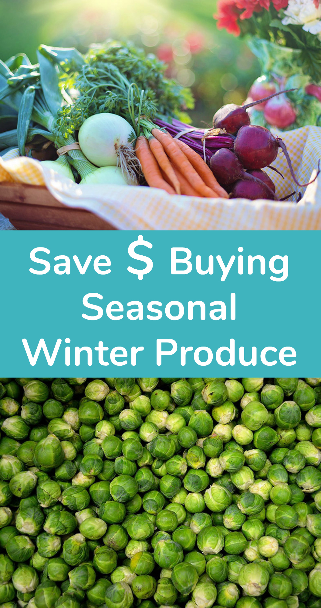 Saving Money Buying Winter Seasonal Produce