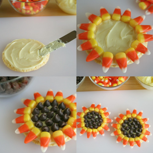 Sunflower Cookie Recipe Sunflower cookies to brighten up your day