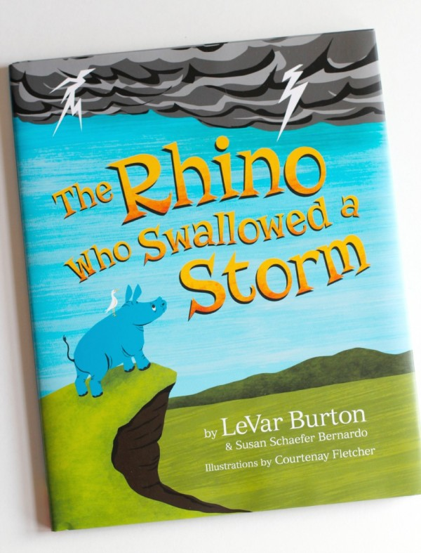 The Rhino Who Swallowed a Storm Book