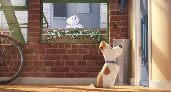 the-secret-life-of-pets-pops
