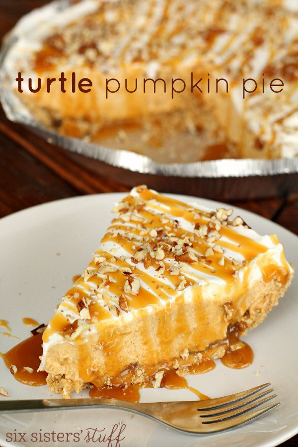 Turtle-Pumpkin-Pie