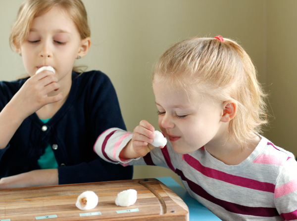 Using Our Sense of Smell with Kids