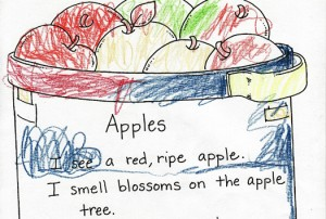 apple_5senses_poem