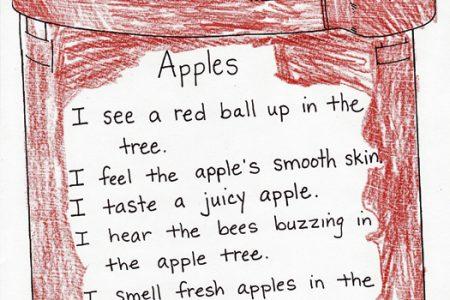five senses apple poem