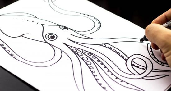 Art for Kids squid tutorial