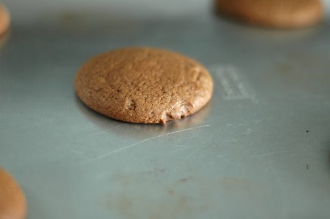 baked rootbeer cookie