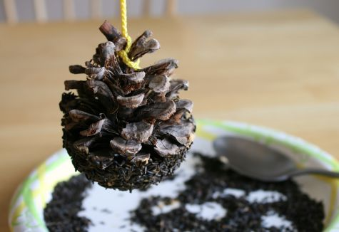 Pine Cone Crafty Bird Feeder
