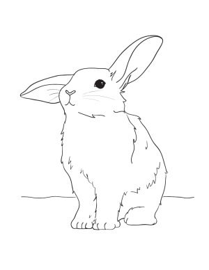 Bunny Easter Coloring Page
